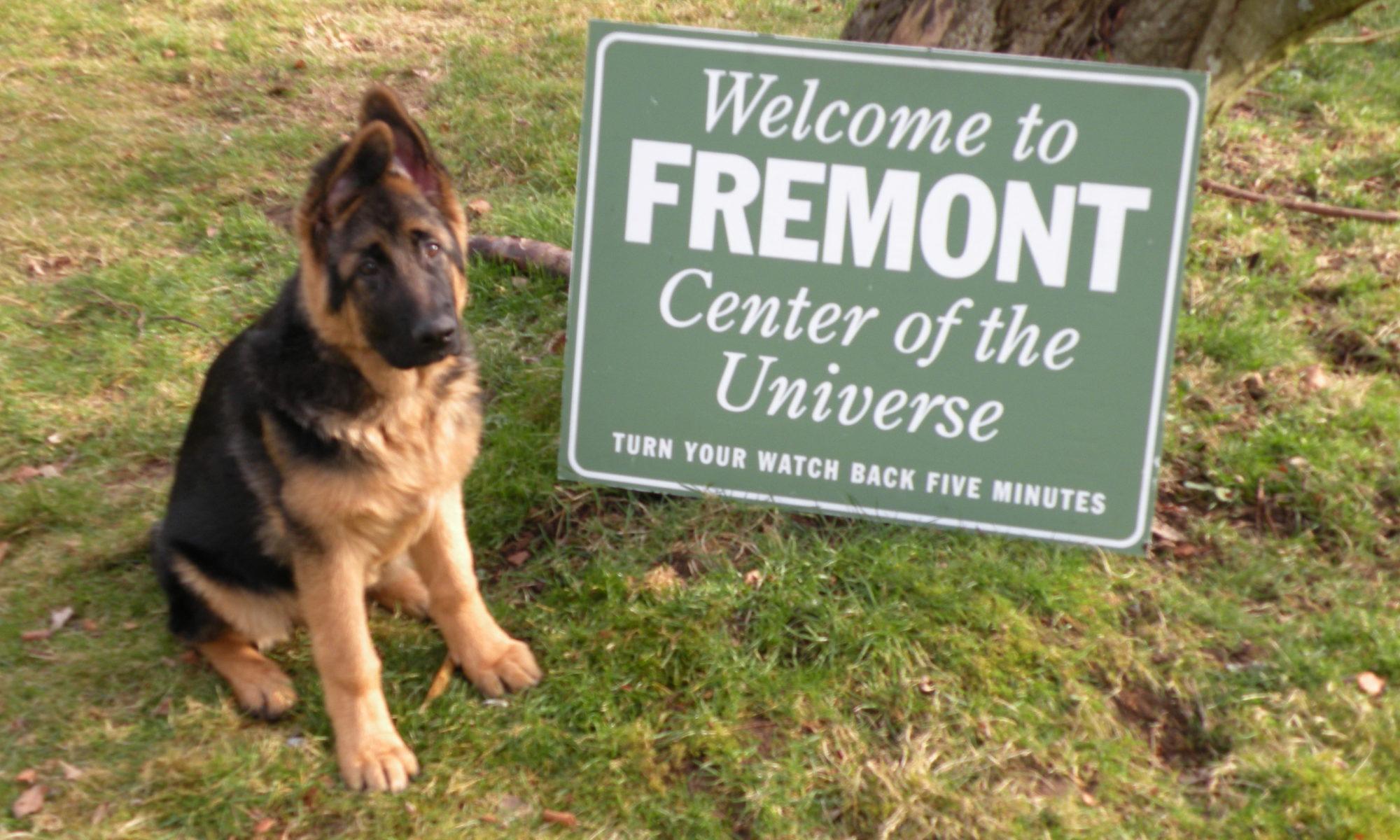 THE FREMONT TOUR